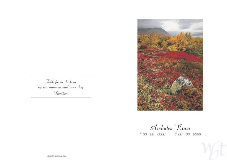 Salmehefte 045 høst fjell
